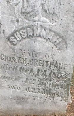 Susannah J. <I>Roush</I> Breithaupt