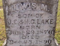 Lewis M Lake