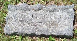Samuel F. Cudlip