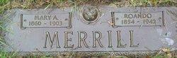 Mary Angeline <I>Woodin</I> Merrill