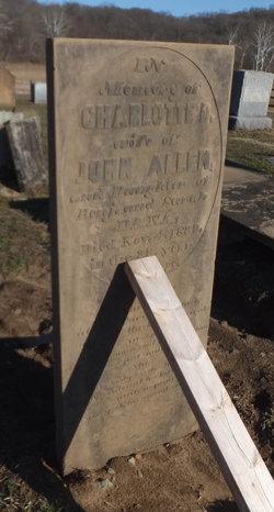 Charlotte P. <I>Dana</I> Allen