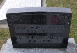 James Albert Abbott