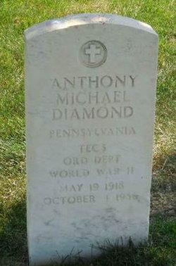 Anthony M Diamond