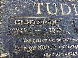 Domenico Salvatore Tudda