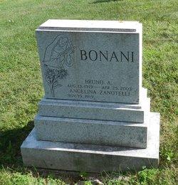 Bruno A. Bonani