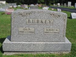 Albert Henry Burkey
