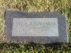 Anton Rollin Hared