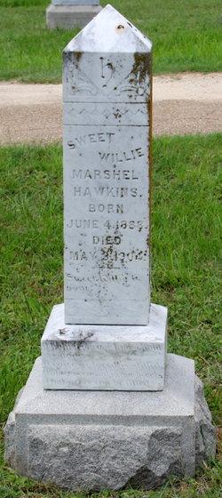 Willie Marshel Hawkins