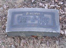 Eliza Anne <I>Burns</I> Fox