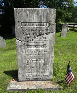 Willard Whipple