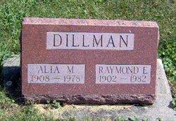 Raymond E. Dillman