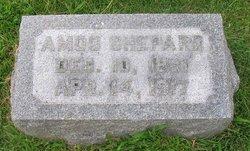 Amos Shepard