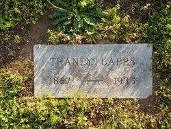 Thaney <I>Massengill</I> Capps