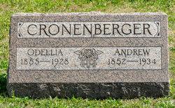 Odellia <I>Lederer</I> Cronenberger