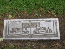 Jacob Adam Laub