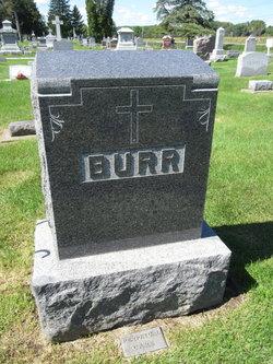 Albert L Burr