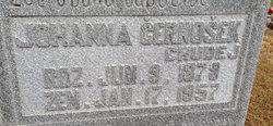Johanna <I>Lednicky</I> Cernosek