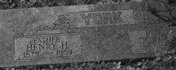 Dorothy York