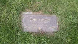 James A Baugh