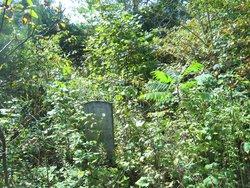Reeves Osborne Family Cemetery