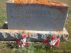 Anna <I>Osteros</I> Johnson