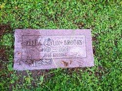 Zella Ceylon Brooks