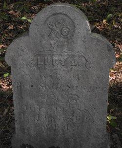 Lucy J Sawyer
