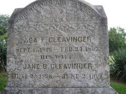 Asa Eli Cleavinger, Jr