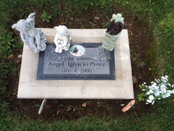 Angel Ignacio Perez