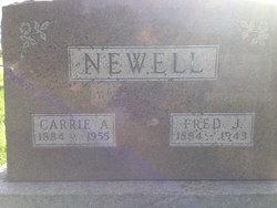 Carrie Ann <I>Kyger</I> Newell