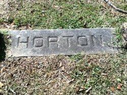 John Henry Horton