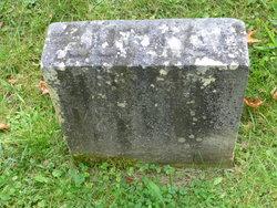 Julia O. <I>Griggs</I> Palmer