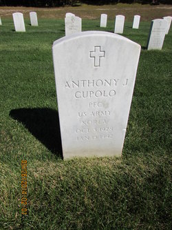 Anthony J Cupolo