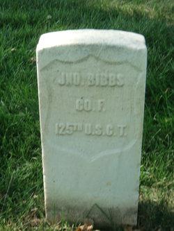John Bibbs