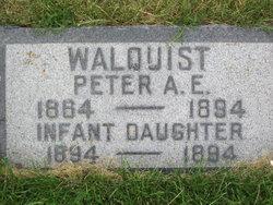 Peter E Walquist