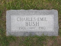 Charles Emil Bush