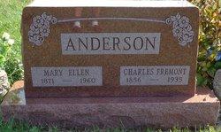 Mary E Anderson