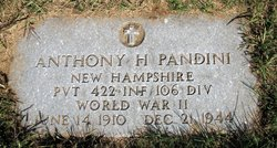 Pvt Anthony H Pandini