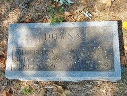 Elizabeth <I>Craig</I> Downs