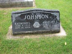Raymond LeRoy Johnson