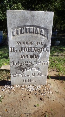 Cynthia Ann <I>Jackson</I> Johnson