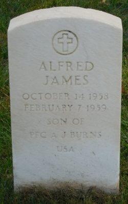 Alfred James Burns