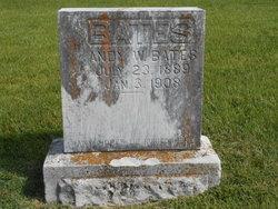 Andrew W. Bates
