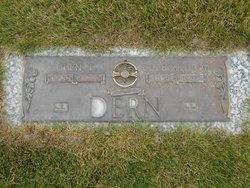 Glen Taylor Dern