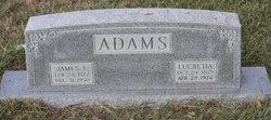 "Lucretia ""Lou"" <I>Hale</I> Adams"