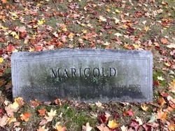 Anne C <I>Henderson</I> Marigold