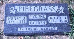 Ames Golden Piepgrass