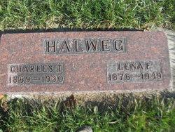 Charles T Halweg