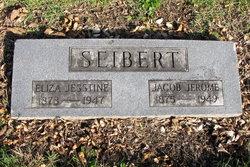 """Eliza Jesstine """"Jessie"""" <I>Johnson</I> Seibert"""