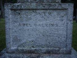 Esther <I>Mixter</I> Calkins